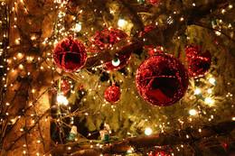 Скидка на тур: «Рождественские впечатления»