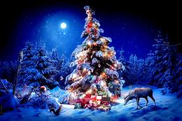Туризм Акция «Новогодний подарок для Вас - 1 сеанс бани бесплатно» До 31 декабря