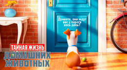 Акция «Билеты в кино от 1, 75 руб»