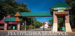 Туризм Скидки на проживание  в гостиницах  Беловежской пущи До 8 декабря