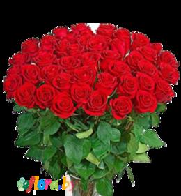 Акция «51 красная роза»