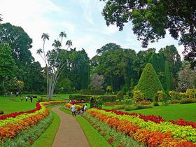 Шри-Ланка: найди свой рай!