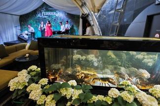 Охота на лобстера. В ресторане Ember VII Heaven появился аквариум с омарами