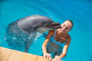 Где пройти курс дельфинотерапии для будущих мам