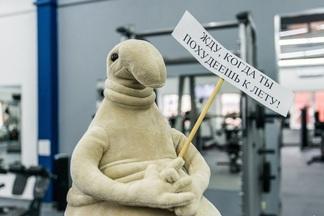ЗОЖ: в Минске открылся новый фитнес-клуб «Физика» со ждуном. Разовое занятие — 5 рублей