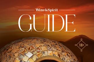 Анонс журнала Guide