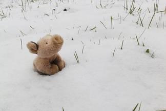 Фотофакт: как минчане встретили первый снег в Instagram