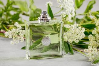 Все еще не нашли свой парфюм? ТОП-20 ставших классикой ароматов для мужчин и женщин