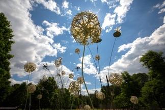 Больше 5 метров высотой и десятков тонн весом: в центре Минска появился арт-парк гигантских инсталляций