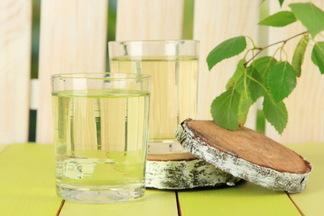 Рецепты кваса из березового сока: от классики до авторства