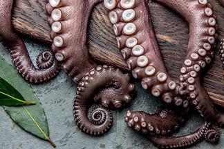 3 новых блюда из осьминогов. На гурмэ-террасе Ember VII Heaven стартуют гастрономические недели