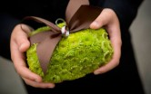 Фотографии свадьбы в зеленых тонах