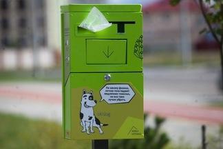 Культурная революция: в Минске установили первые урны для культурного выгула собак