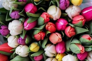 Новая услуга. Работники аэропорта встречают гостей с цветами