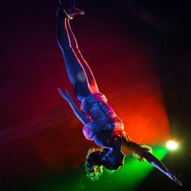 Ночное шоу в Дельфинарии