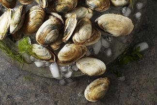 Сезон моллюсков: на террасе Ember предлагают попробовать голубые мидии и вонголе