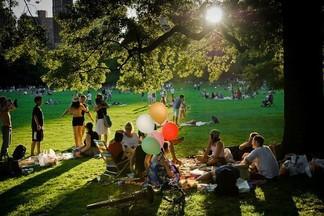 Вас приглашают на первый театральный пикник с экскурсиями за кулисы и уличным буфетом
