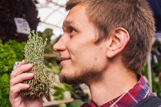 Экспертиза: выбираем овощи, фрукты, зелень и крупы с веганом, шеф-поваром кафе Beetlejuice