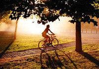 Еще больше велосипедистов: новые пункты проката в столице